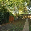 Bright Dl with Garden Nx Willesden Junctions Main Photo