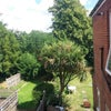 2 bedroom flat with garden in Portswood Main Photo