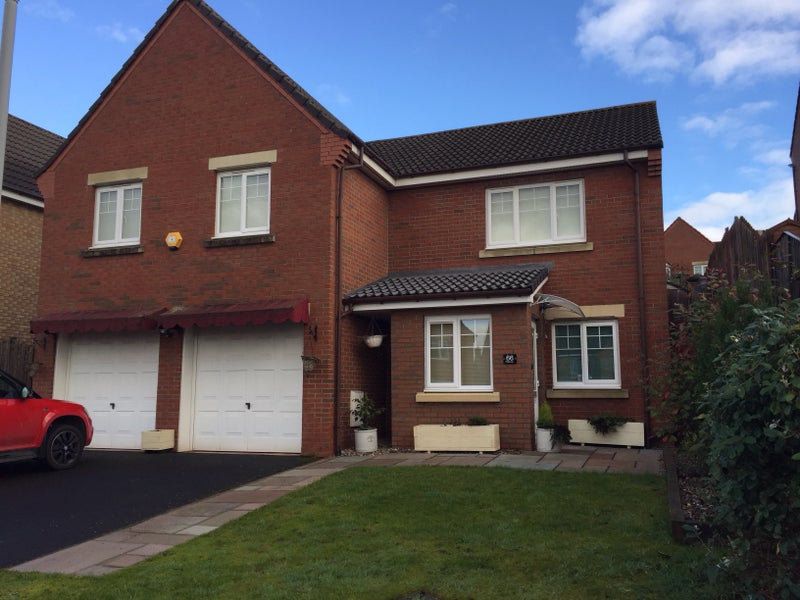 Double Room For Rent Dunfermline