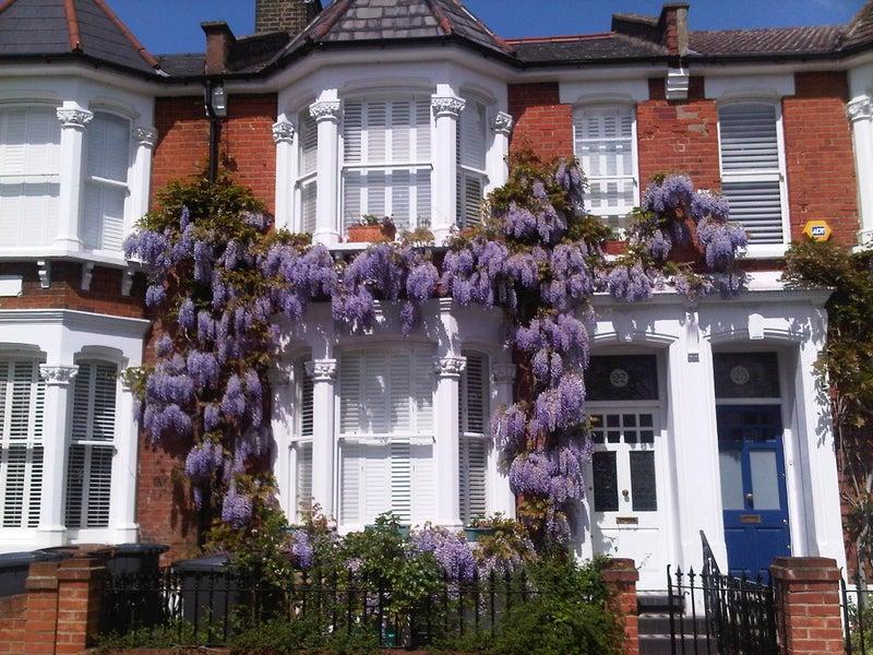 'Modern Victorian House , Victoria Park Village' Room To