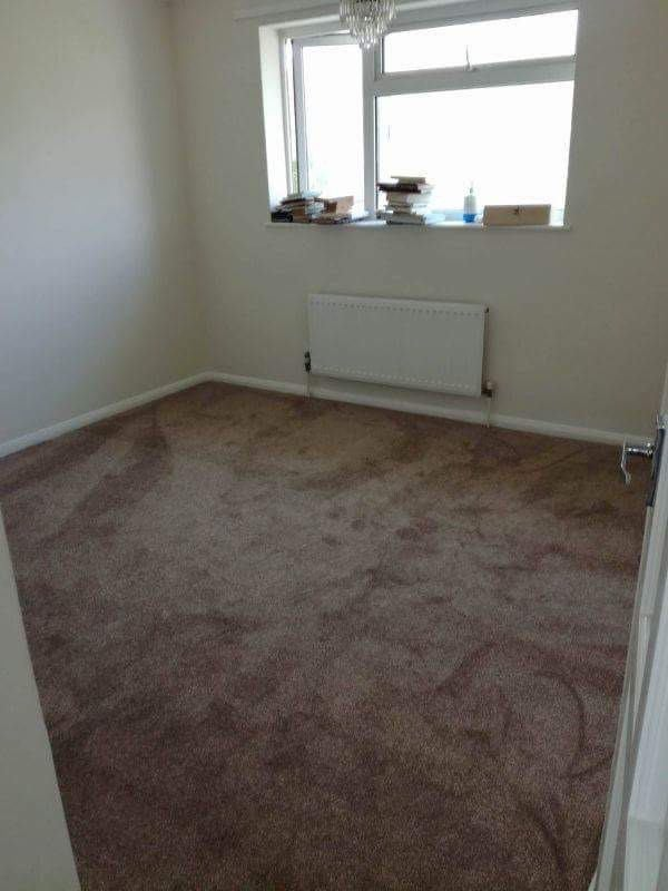 Looking For Room To Rent In Braintree