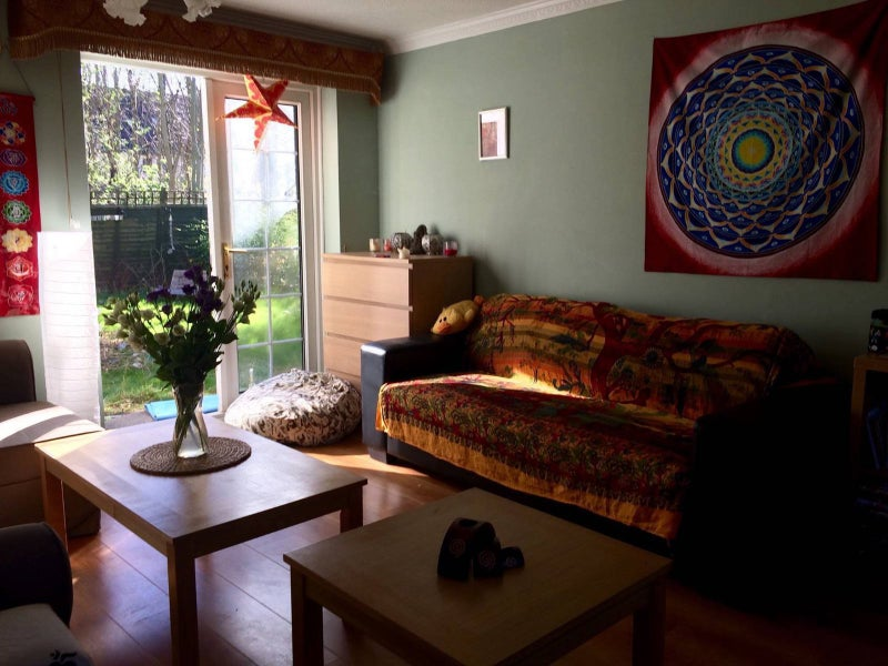 Vegan House Will Rent A Room  People