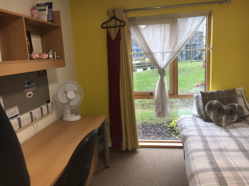 Rent A Room York University