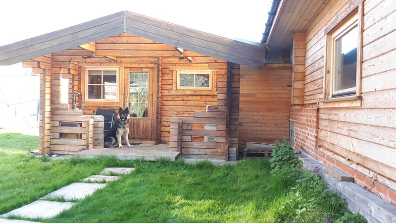 House To Rent With A Large Dog In Winter Heaven