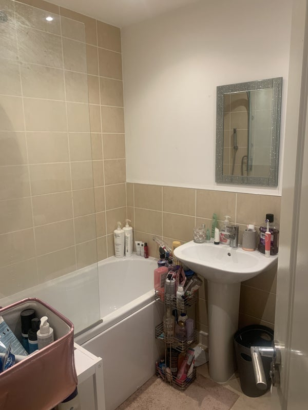 Lovely Room Available in House with 23 yo Female Main Photo