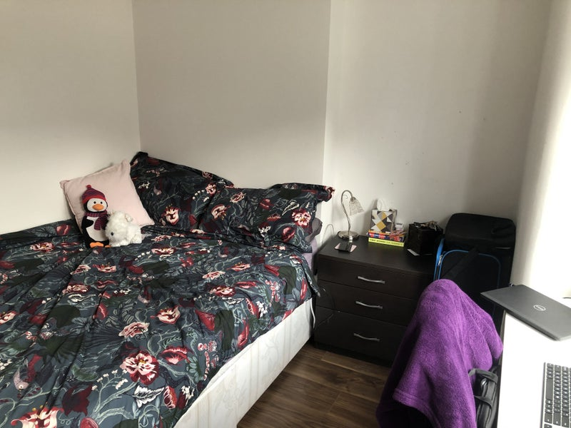 Bright, double room in sociable house share Main Photo