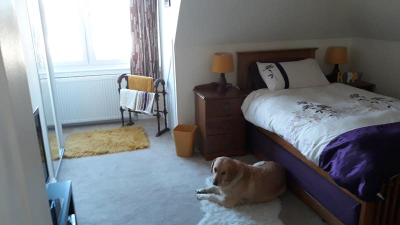 Double room on airport and city centre bus route Main Photo