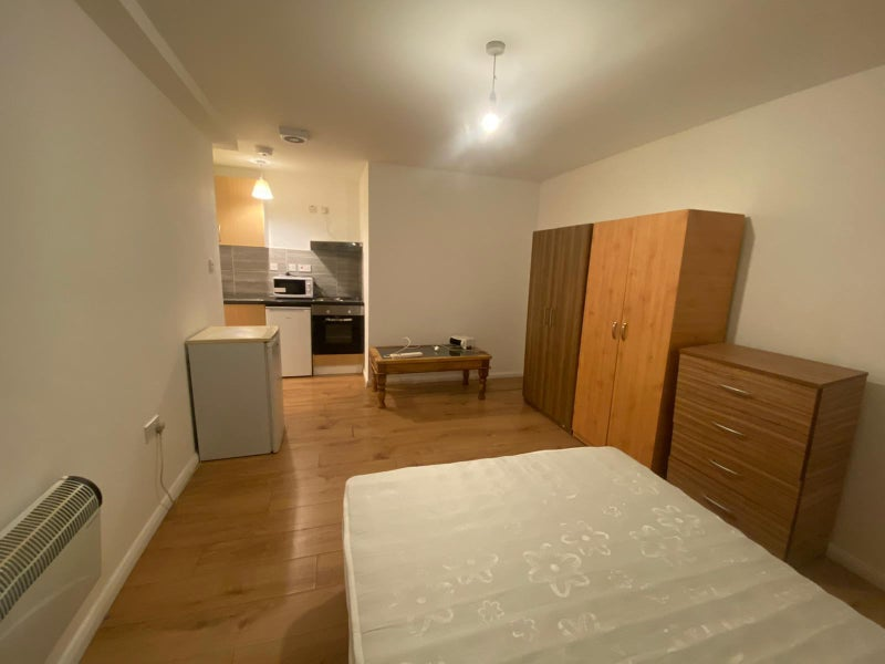 Furnished Large Studio in Anerley Main Photo