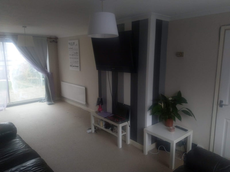 Friendly professional looking for a flatmate Main Photo