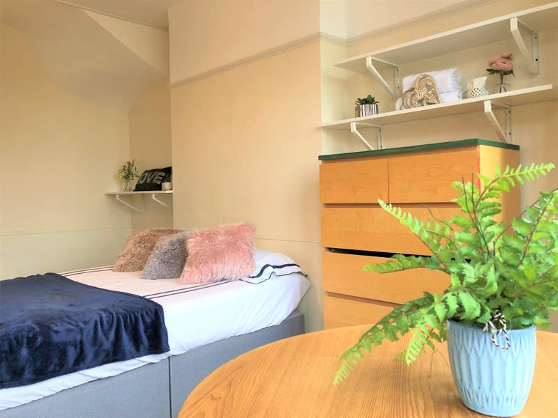 🌺  Large double room available 🌺 Main Photo