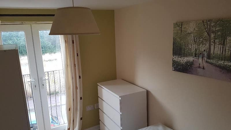 Single Room in Hampton  Main Photo